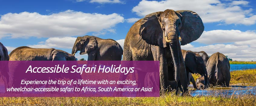 Accessible Safari Holidays - Experience the trip of a lifetime with an exciting, wheelchair-accessible safari to Africa, South America or Asia!
