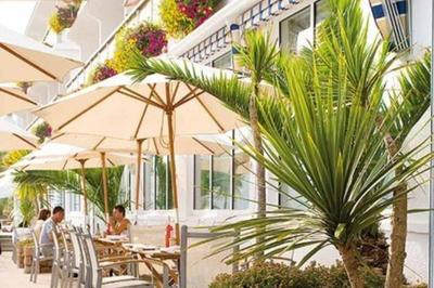 Palm trees and cafe at at accessible luxury spa hotel, Jersey, Channel Islands