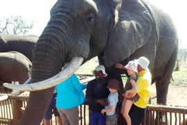 Family Adventures Safari holiday in South Africa