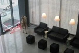 Art Hotel Olympic in Turin