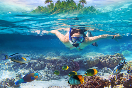 Diver swimming by a tropical reef