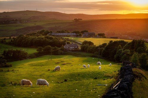 Accessible Holidays In Yorkshire For People With