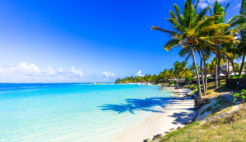 Palm trees on a white sand beach by clear blue sea in Mauritius, in the Indian Ocean