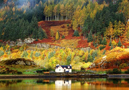 Holiday home in an autumn scene by a lake