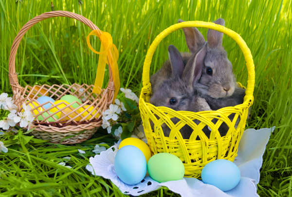 Easter bunnies and eggs in baskets