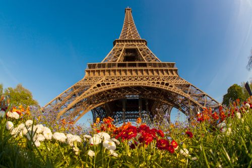 Disabled Holidays in Paris