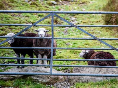Image 2 of Cumbria / Lake District