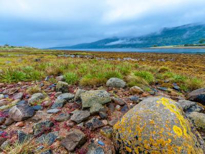 Image 2 of Scotland