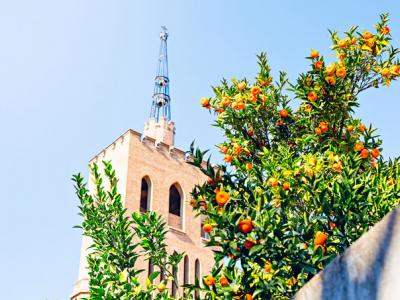 Image 7 of Barcelona
